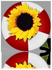http://tickfa.aftab.cc/img/tickfa_logo.png